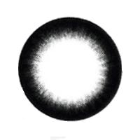 【Toric/12month】 Smoky  Black  /538 <br> DIA:14.0mm, G.DIA:13.8mm