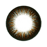 【Toric/6month】 NOBLE borwn Toric / 1056</br> DIA:14.0mm, G.DIA:13.4mm