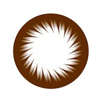 【Toric/12month】 BC-102 brown toric / 1096 </br> DIA:14.0mm, G.DIA:13.4mm