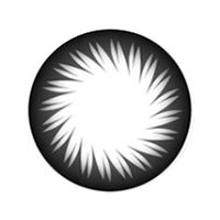 【Toric/12month】CK-109 black Toric / 1100 </br> DIA:14.0mm, G.DIA:13.4mm