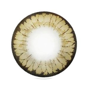 【Toric/12month】 CNC / STARWAY brown toric 180 AXIS 1379 </br>DIA:14.0mm, G.DIA:13.2mm