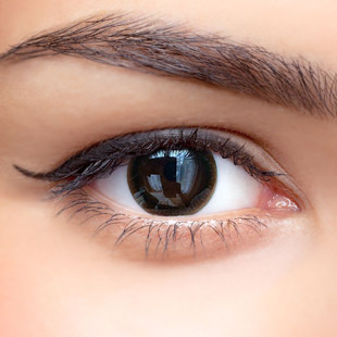 【 Yearly / 2 Lenses】 MAXLOOK SCL 22 Choco / Silicon Hydrogel /1030