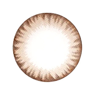 【Toric/12month】 Maxlook Scl C  Brown / Silicon Hydrogel /1437 </BR>DIA:14.3mm, G.DIA:13.5mm