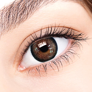 【Yearly / 2 Lenses】 Top Plus Brown 14.0mm /038