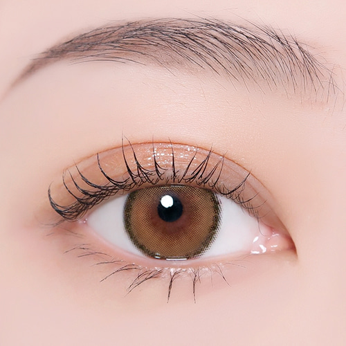 【I-Dol Lens/ 1month 】 ROZE AIRY Pumpkin Brown /1607
