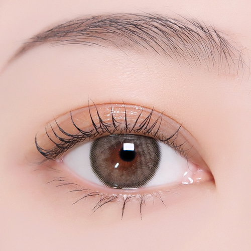 【I-DOL Lens 】CANNA ROZE Nude Brown /1611