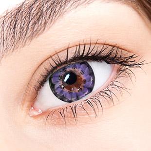 【Yearly / 2 Lenses】 Caroline Violet / 099