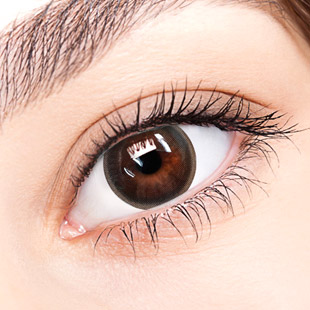 【Yearly / 2 Lenses】 Bonnie Brown / 200