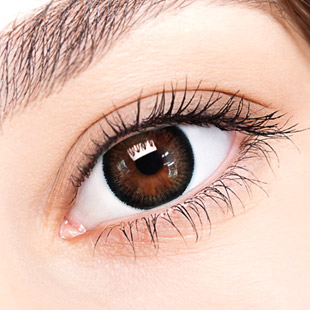 【Yearly / 2 Lenses】 Top Plus Black 14.0mm /040