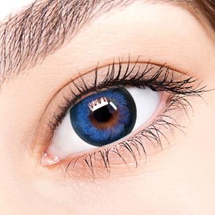【Yearly / 2 Lenses】 Rachel Blue   /137